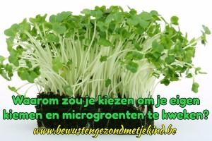 kiemen en microgroenten